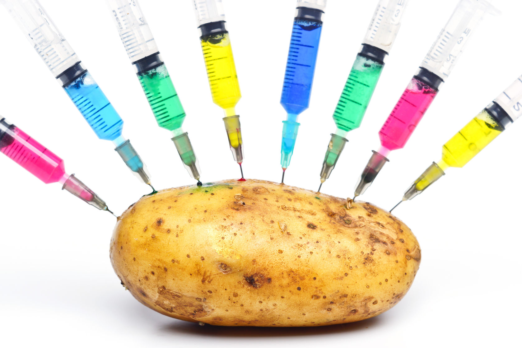 the controversy surrounding genetically modified organisms in todays world The subject of genetically modified organisms (gmos) is one of the most hotly  debated food and environmental topics in the world today.