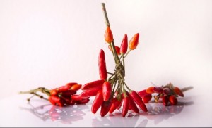 chili-spice-chili-peppers-red-sharp-food